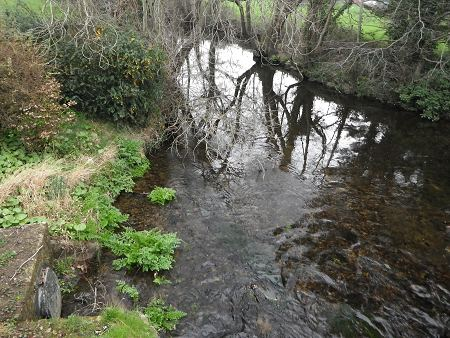 River Bovey, Bovey Tracey