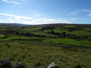 Hexham, Northumeberland - rural view