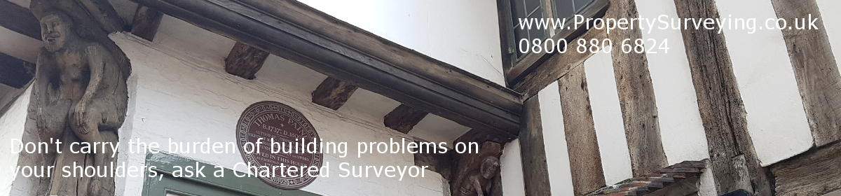 Property Surveying NEWSLETTER