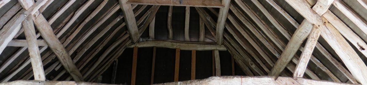 roof timbers from old property survey