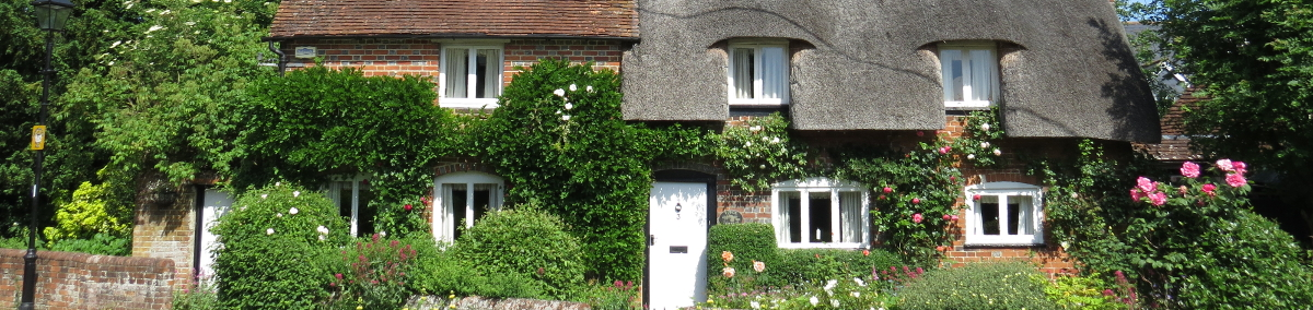 thatched roof property