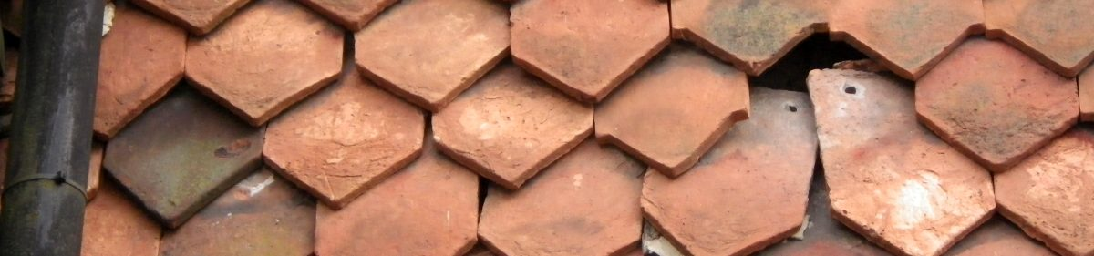 image of clay tiles on a house roof