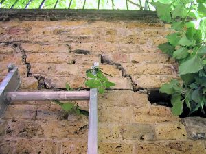 Cracks wider than a 10p piece can indicate subsidence