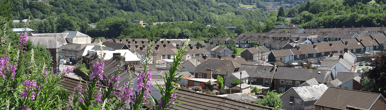 Newbridge rooftops.